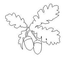 Acorns & Oak Leaves 2D Motif